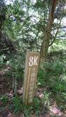 登山:百岳:P1050264.JPG
