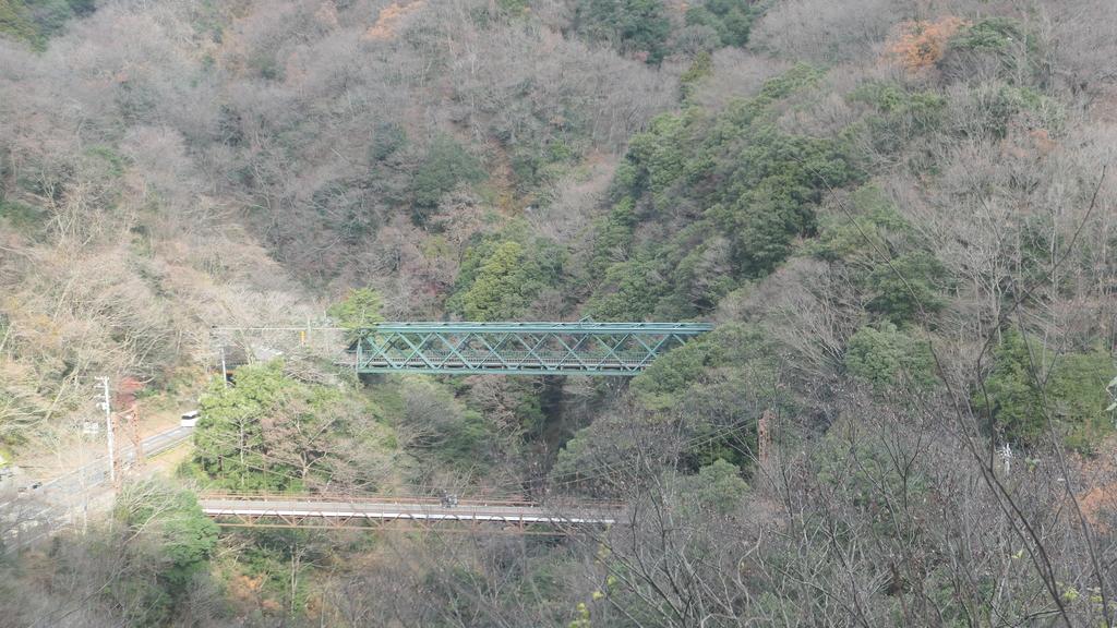 日本 箱根 日光 自由行:P1000545.JPG