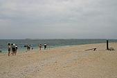 險礁:IMG_2144