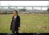 2008/3/16 疏洪道波斯菊:003.JPG