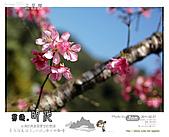 2011/2/27 群樂機車小組長征day2北橫:087.jpg