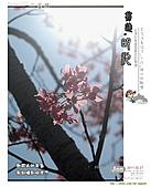 2011/2/27 群樂機車小組長征day2北橫:091.jpg