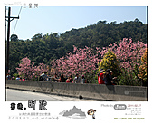 2011/2/27 群樂機車小組長征day2北橫:093.jpg