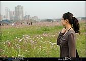 2008/3/16 疏洪道波斯菊:017.JPG