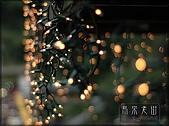 2008/2/16 吃遍烏來老街:013.JPG