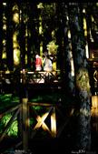 2012/12/21 蘑菇數位員工旅遊 棲蘭神木園 Day2 Nikon D300s: