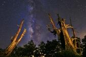 2016 塔塔加夫妻樹銀河星軌日出:IMG_2097 - 複製.JPG
