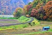 2017 秋田內陸線火車好楓景:IMG_6422 - 複製.jpg