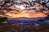 2017 福島鶴之城好楓景:IMG_7479 - 複製.JPG