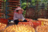 2011新埔柿柿如意與南寮漁港義式風情一日遊:IMG_9487.JPG