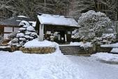 2018 冬遊山形山寺賞雪趣:IMG_8992 - 複製.jpg