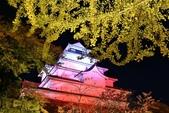 2017 福島鶴之城好楓景:IMG_7498 - 複製.jpg