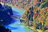 2017 福島只見線第一~四鐵橋好楓景:IMG_7683 - 複製.jpg