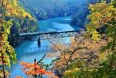 2017 福島只見線第一~四鐵橋好楓景:IMG_7749 - 複製.jpg