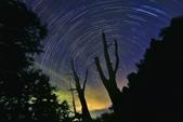 2016 塔塔加夫妻樹銀河星軌日出:IMG_215181 - 複製.jpg