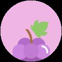 酒店:grapes-icon08.png