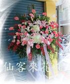 仙客來花坊:C-529(H).jpg