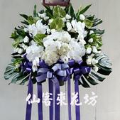 仙客來花坊:S-414(L).jpg