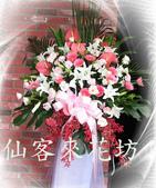 仙客來花坊:C-533(H).jpg