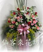 仙客來花坊:C-534(H).jpg