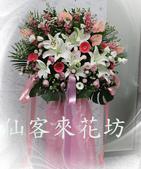 仙客來花坊:C-525(H).jpg