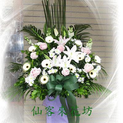 仙客來花坊:S-310(L).jpg