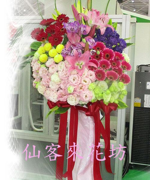 仙客來花坊:C-557(H).jpg