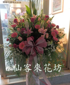 仙客來花坊:C-518(H).jpg