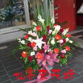 仙客來花坊:C-086(G).jpg