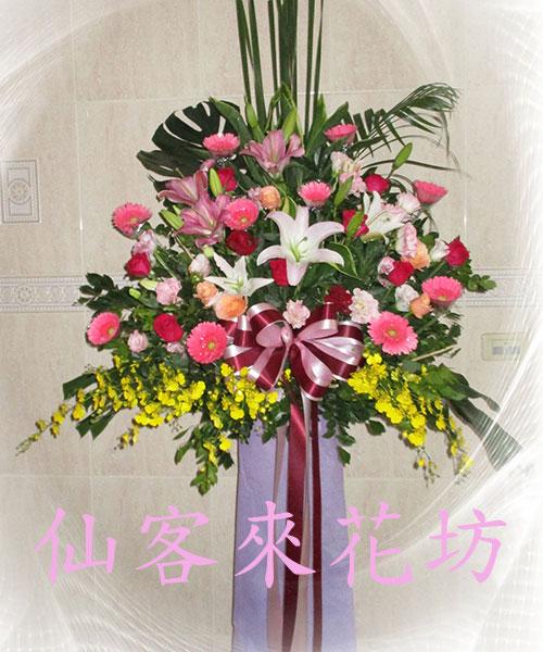 仙客來花坊:C-541(H).jpg