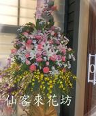 仙客來花坊:C-519(H).jpg