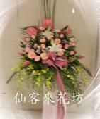 仙客來花坊:C-520(H).jpg