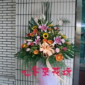 仙客來花坊:C-251(L).jpg