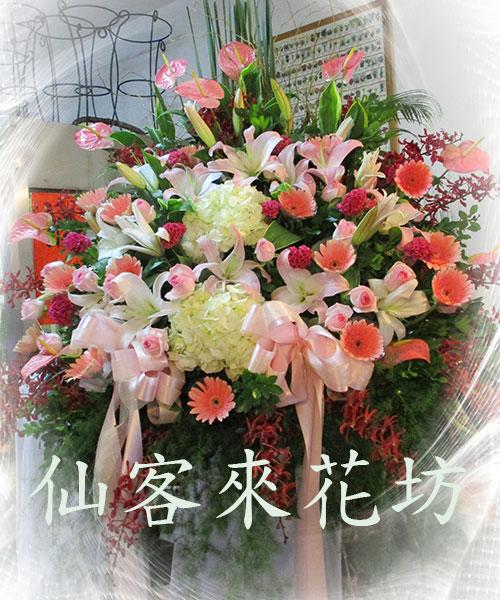 仙客來花坊:C-527(H).jpg