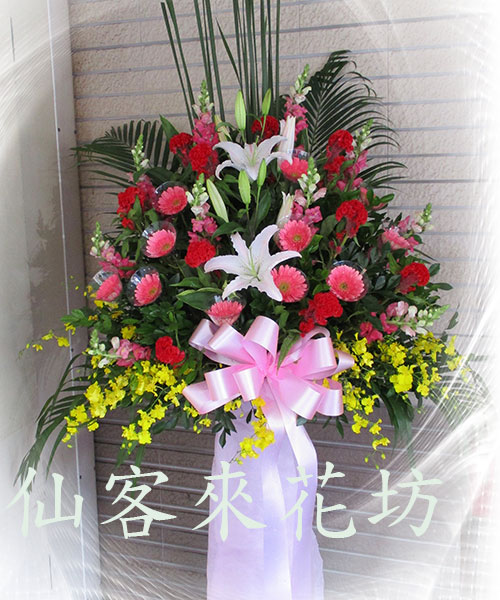 仙客來花坊:C-528(H).jpg