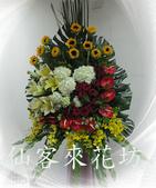 仙客來花坊:C-530(H).jpg