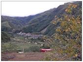 八五山:1950255800.jpg