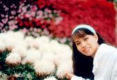 亞哥花園:亞哥花園~蓮珠