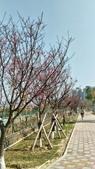 麗園公園:P_20170216_095343_1_HDR_p.jpg