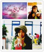 台中大里運動公園:2011-01-15  運動公園