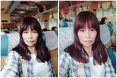 台中花博:MYXJ_20190314080119