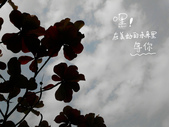 大里國小、國中:2014-01-04   大里國小