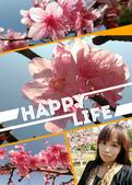 麗園公園:SelfieCity_20170206101204_