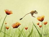 可愛小動物:俄罗斯插画设计02_809