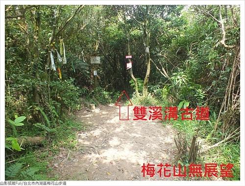 梅花山步道 (8).JPG - 梅花山步道