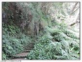玉京山峭壁精靈:玉京山步道 (12).jpg
