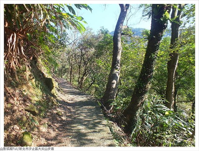大尖山 (6).JPG - 大尖山步道