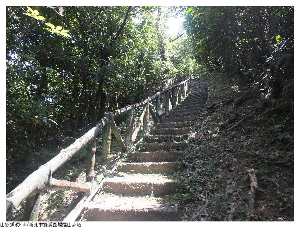 蝙蝠山步道 (12).JPG - 蝙蝠山步道