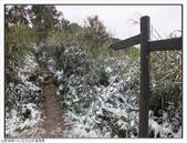 五分山步道雪景:五分山雪景 (11).jpg