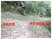 東勢格越嶺步道:東勢格越嶺步道 (18).JPG
